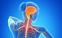 Neurologist - Dr.Tammam Madani